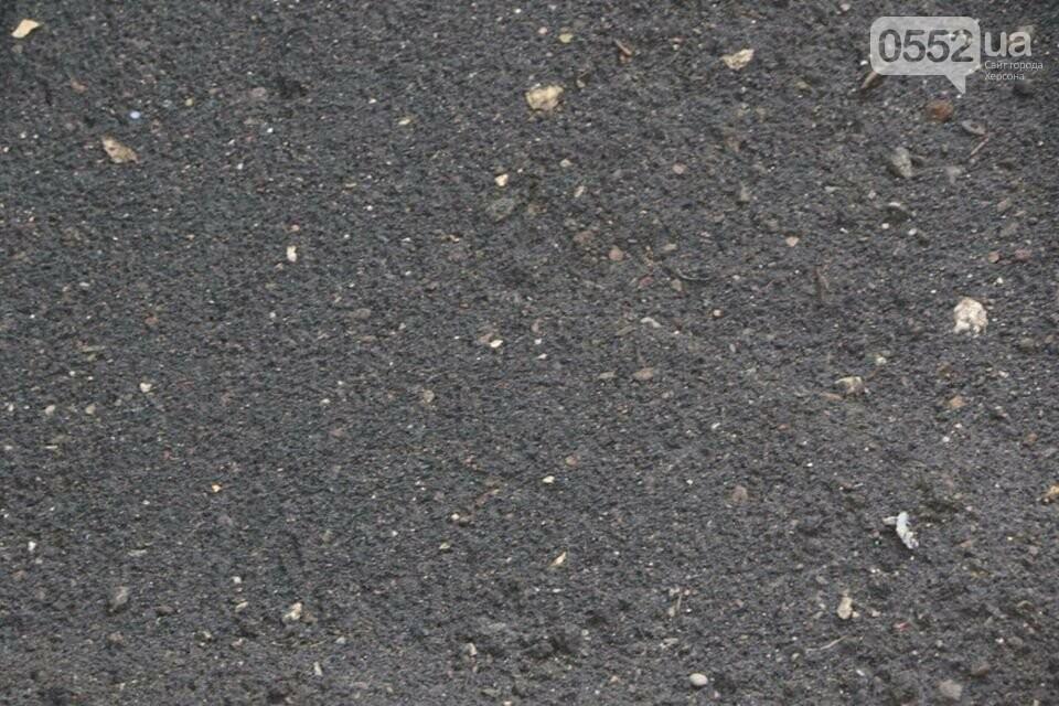 Страшный черный черногорский песок в Херсон провезли, как контрабандный товар, фото-2