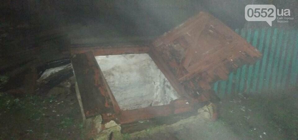 Ребенок раскрыл жестокое убийство в Херсонской области за считанные минуты, фото-2