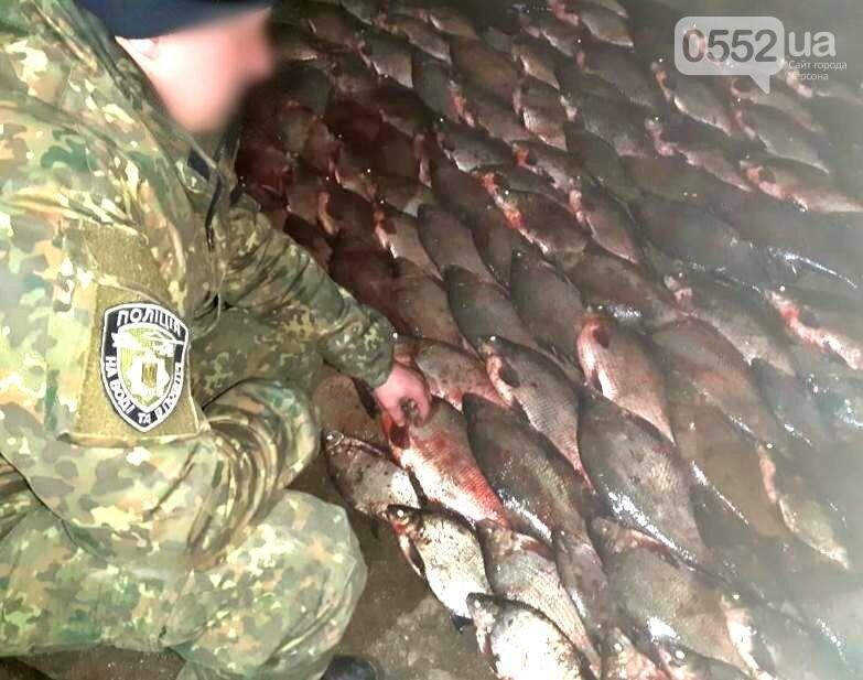 Краснокнижных севрюг, судаков и щук на 100 тысяч гривен выловили браконьеры на Херсонщине, фото-2