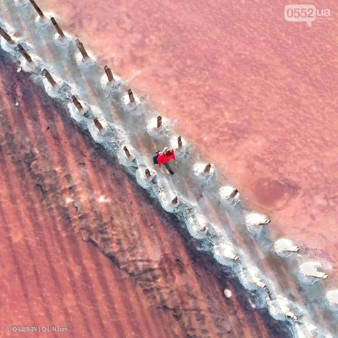 Знаменитое розовое озеро Херсонщины попало в шортлист конкурса Sony World Photo Awards, фото-1