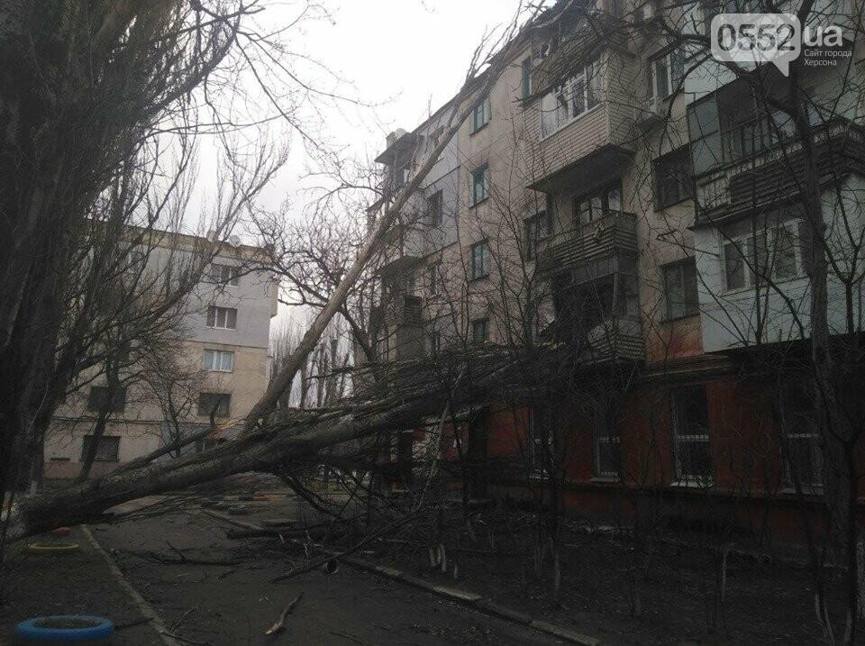 По Херсону пронесся ураган «Юлия»: ветер рвет электропровода, а тополя вырывает с корнем, фото-2