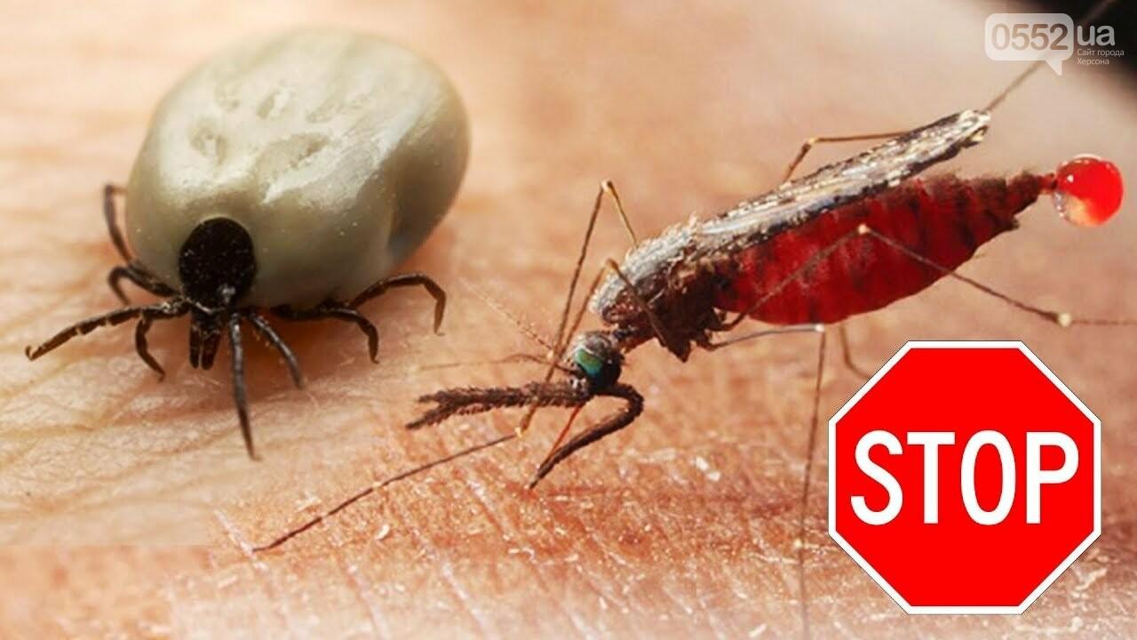 Як захистити себе від кліщів та комарів, фото-1