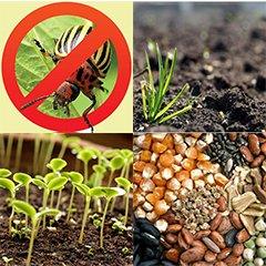 Логотип - Семена, удобрения, СЗР