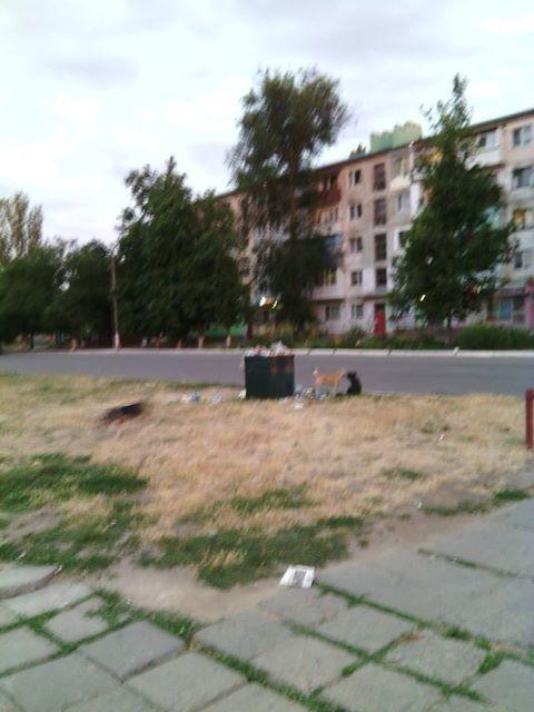 Мусорка вместо деревьев и газонов в центре города на Херсонщине, фото-1