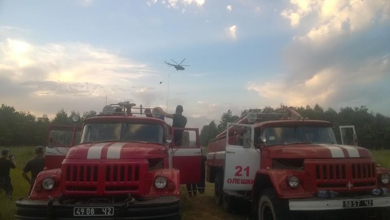 У Голопристанському районі ліквідовано лісову пожежу на площі 20 га, фото-3