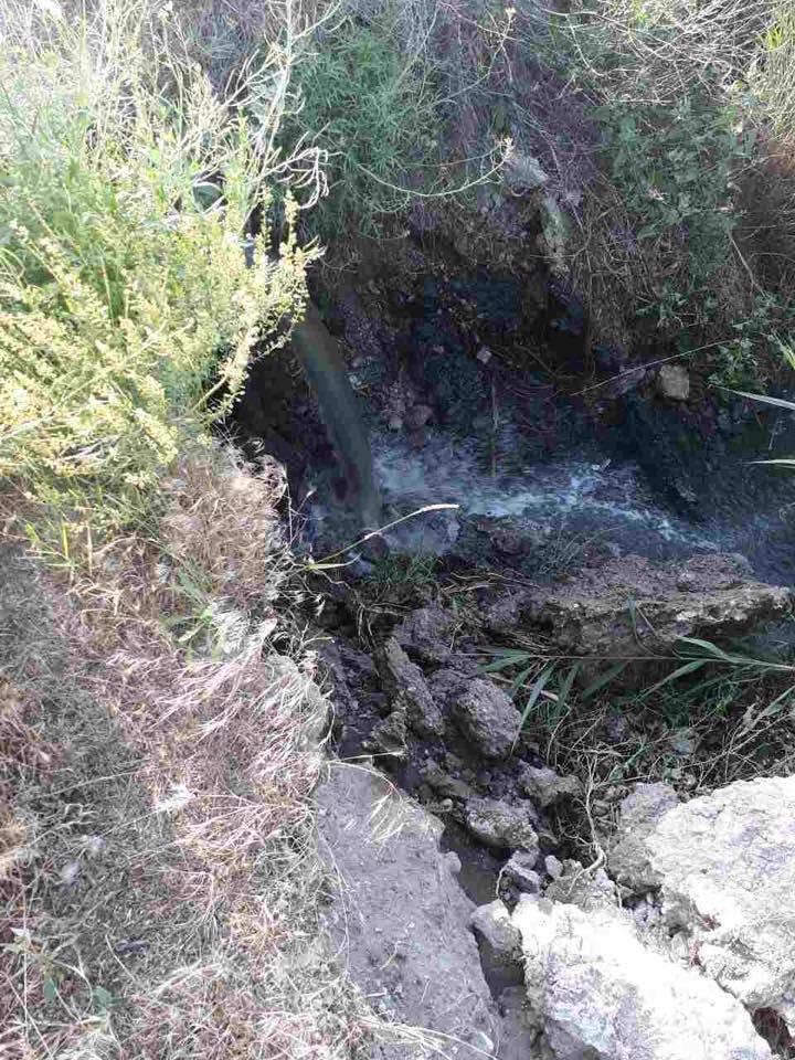 Екологи Херсонської ОДА перевірили очисні Скадовська та Лазурного, фото-2