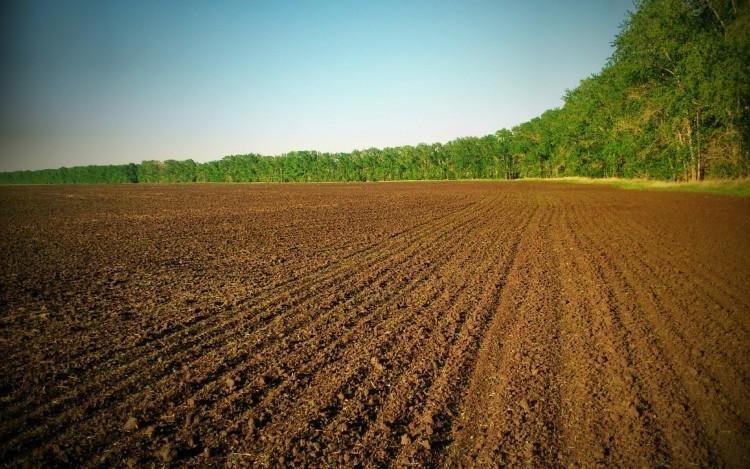Землі Херсонщини збагатили місцевий бюджет  майже на 190 мільйонів гривень, фото-1