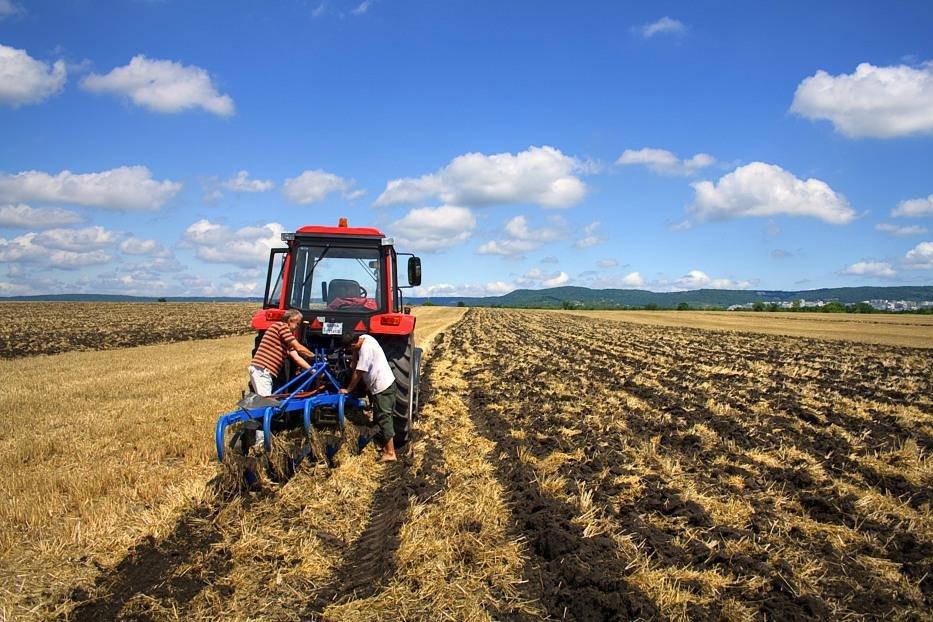 Фермери Херсонщини успішно виходять на нові ринки збуту в Європі та Азії, фото-1