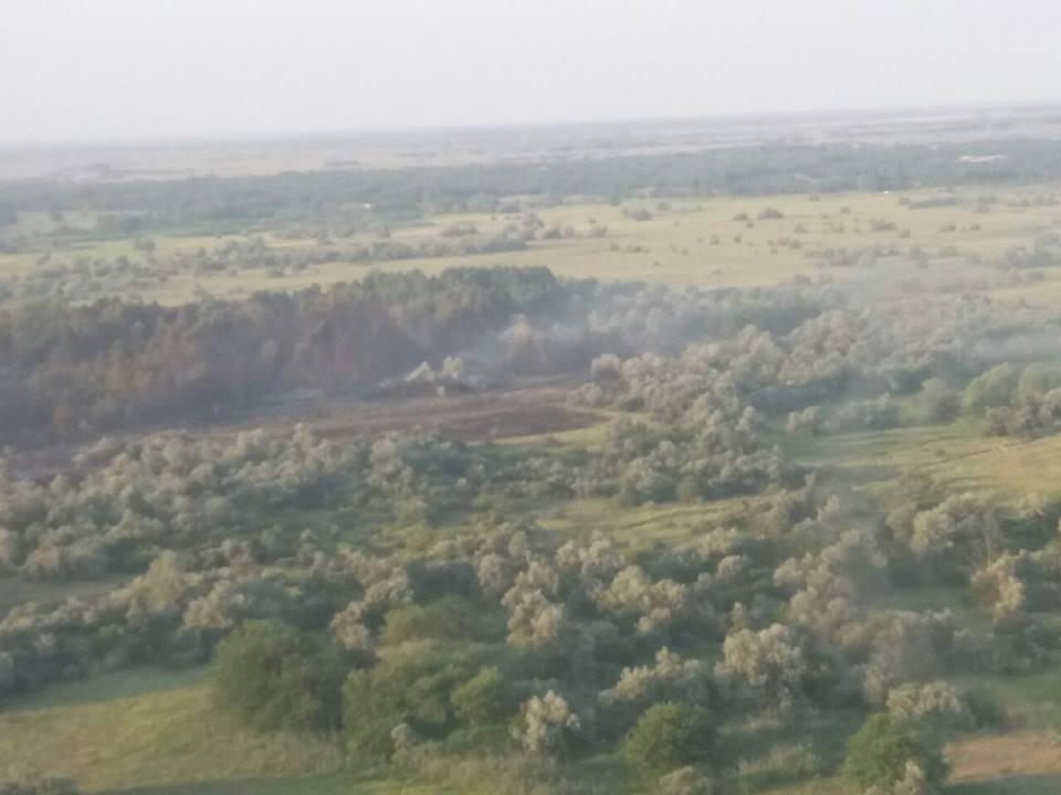 На Херсонщине продолжают гореть леса, фото-1