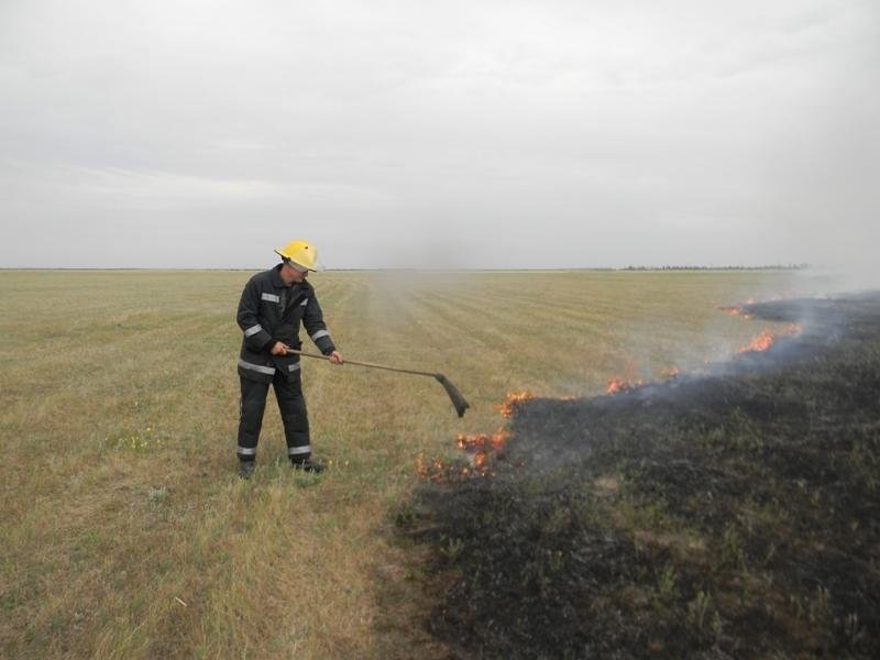 За минулу добу в області вогнеборці 20 разів гасили пожежі сухостою, стерні і лісу, фото-1