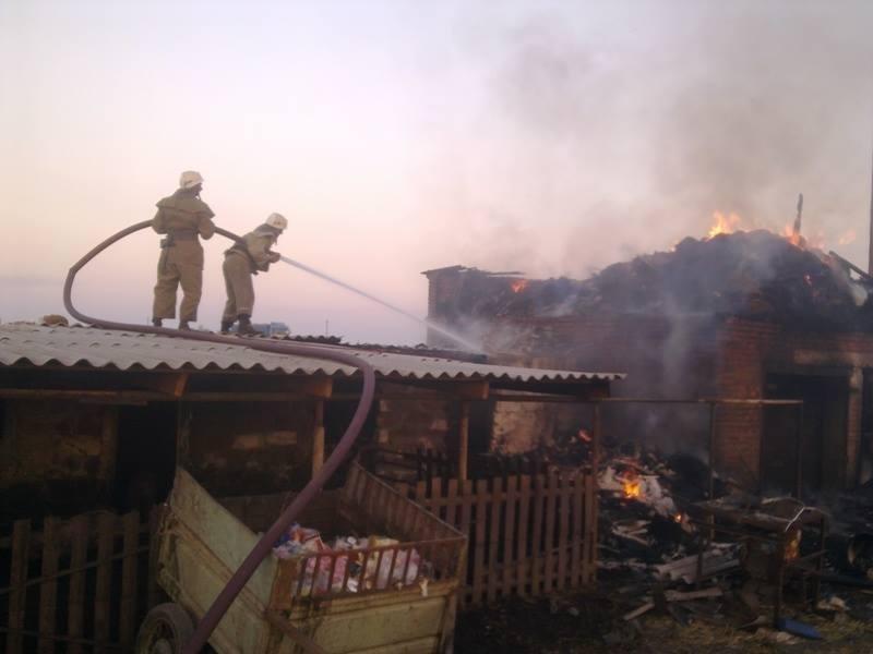 Вогнеборці ліквідували пожежу на Херсонщині, фото-2