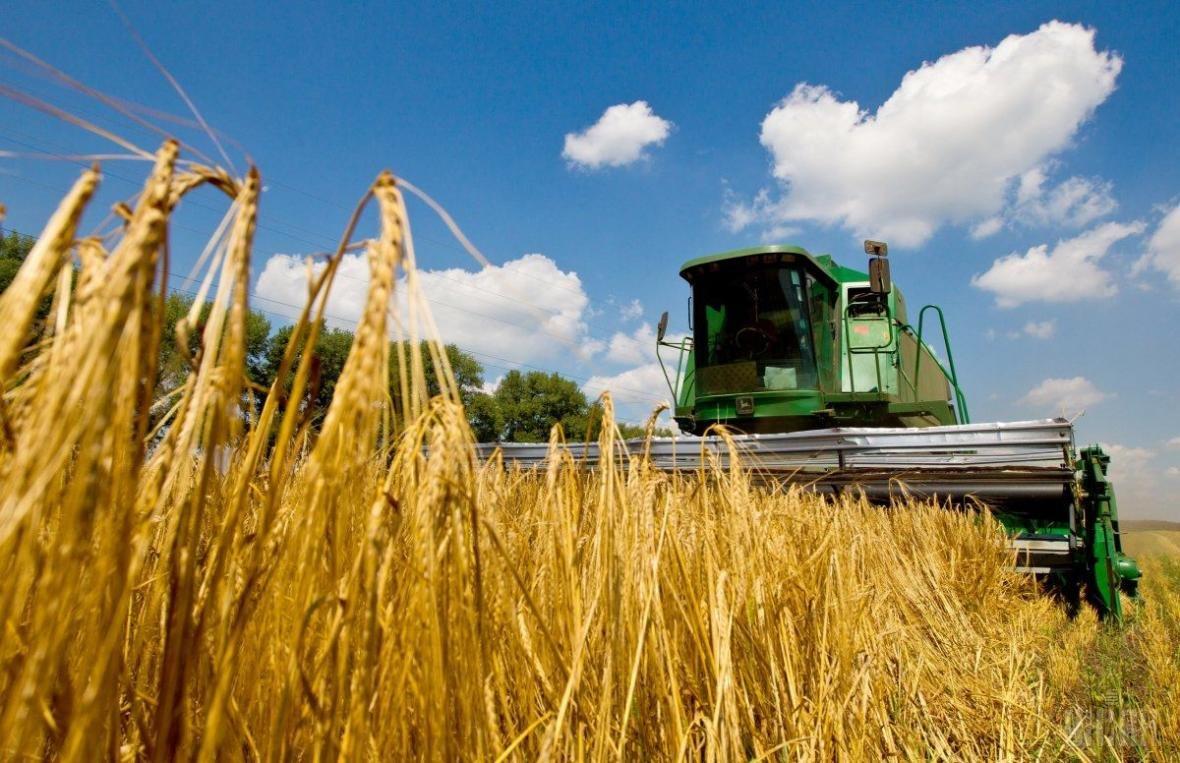 Аграрії Херсонщини завершили збирання ранніх зернових, фото-1