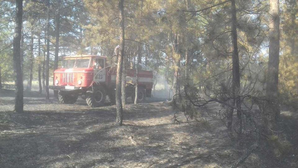 Протягом доби рятувальники 11 разів залучалися до гасіння пожеж в екосистемах, фото-1