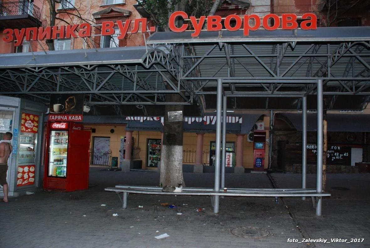 Херсонцы не любят свой город? (фото), фото-1