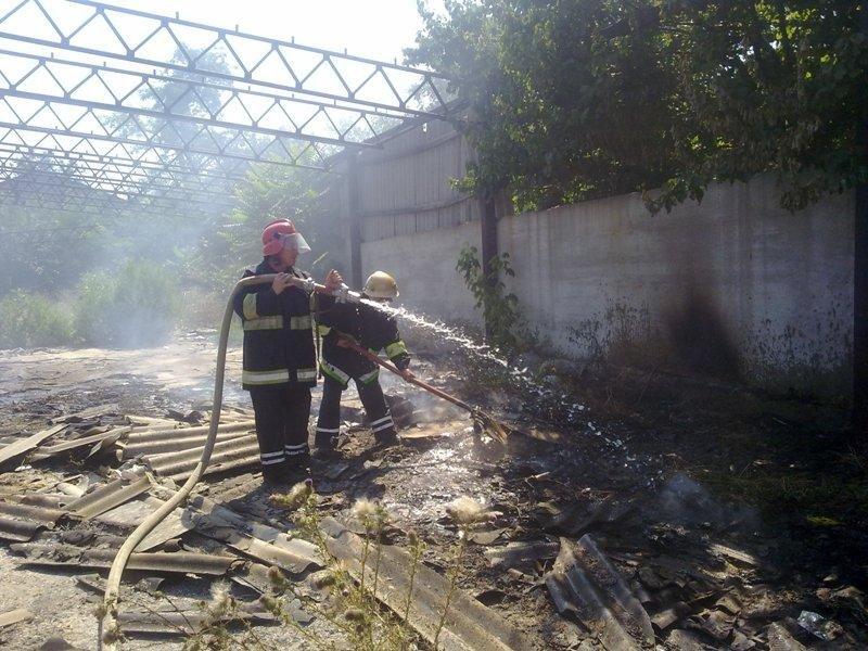 За минулу добу вогнеборці 20 разів гасили пожежі в екосистемах, фото-2