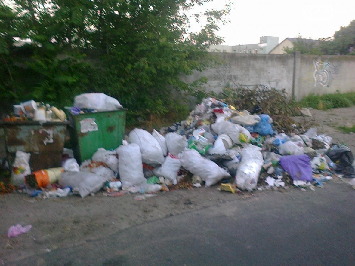 Райцентр Херсонщины утопает в мусоре, фото-1