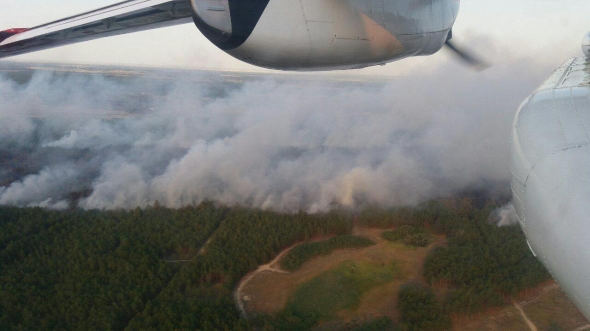 Лісова пожежа на Херсонщині, фото-1