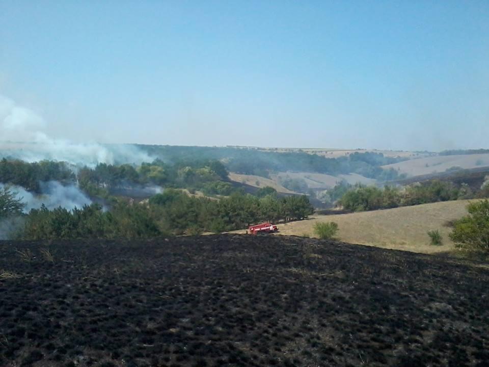 Пожежа на землях Горностаївського лісництва, фото-1