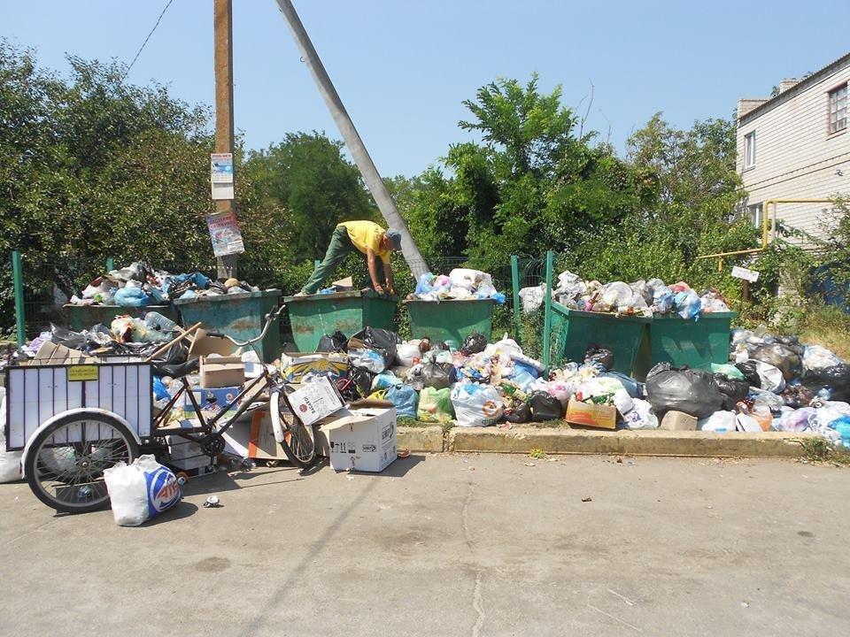 Херсонский курорт утопает в мусоре, фото-1