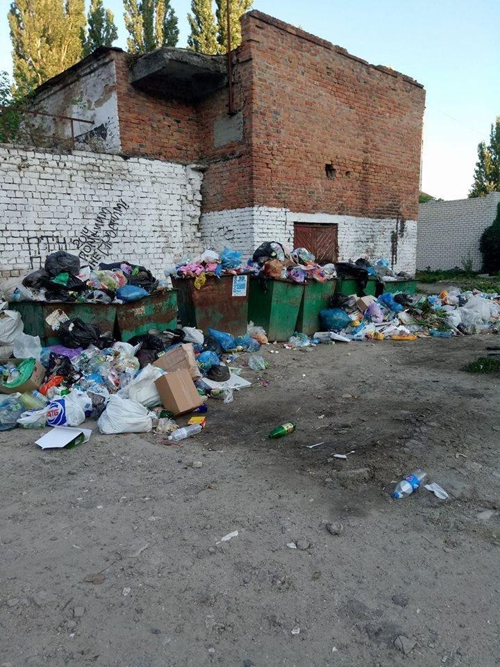 Херсонский курорт утопает в мусоре, фото-2
