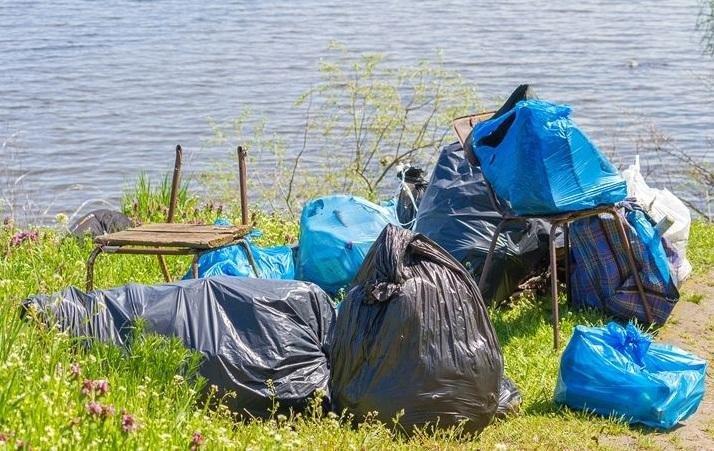 На Херсонщине туристка организовывает уборку берега реки, фото-1