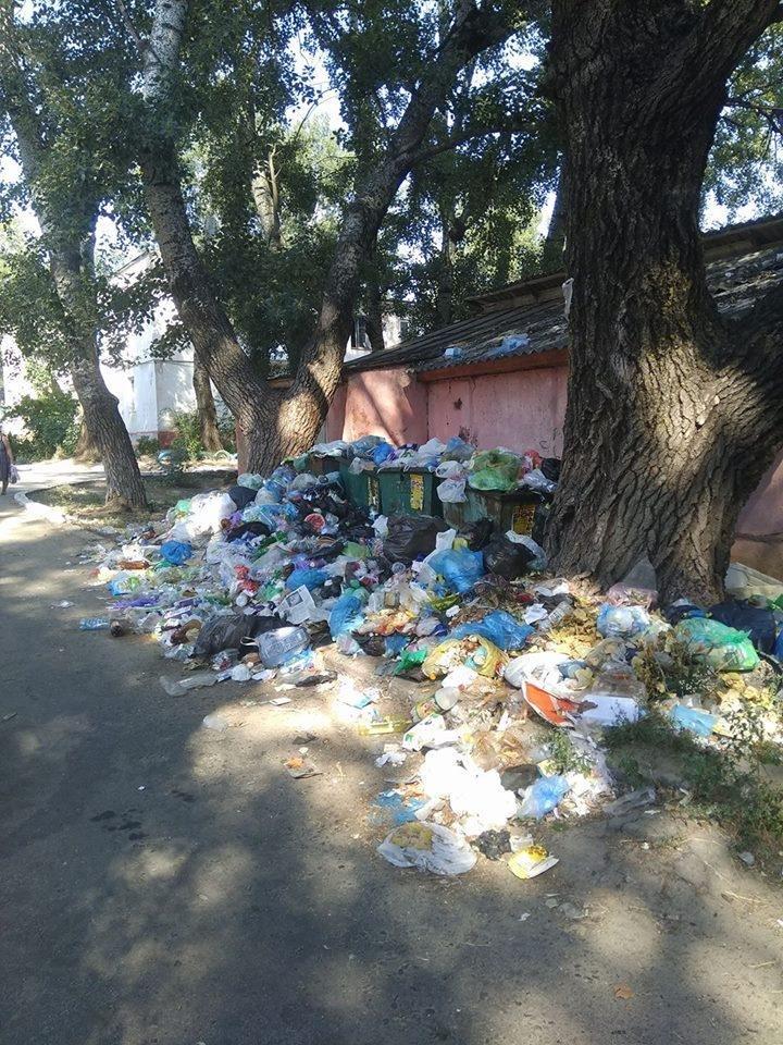 Райцентр Херсонщины утопает в мусоре. Власти уверяют, что проблему решают, фото-1