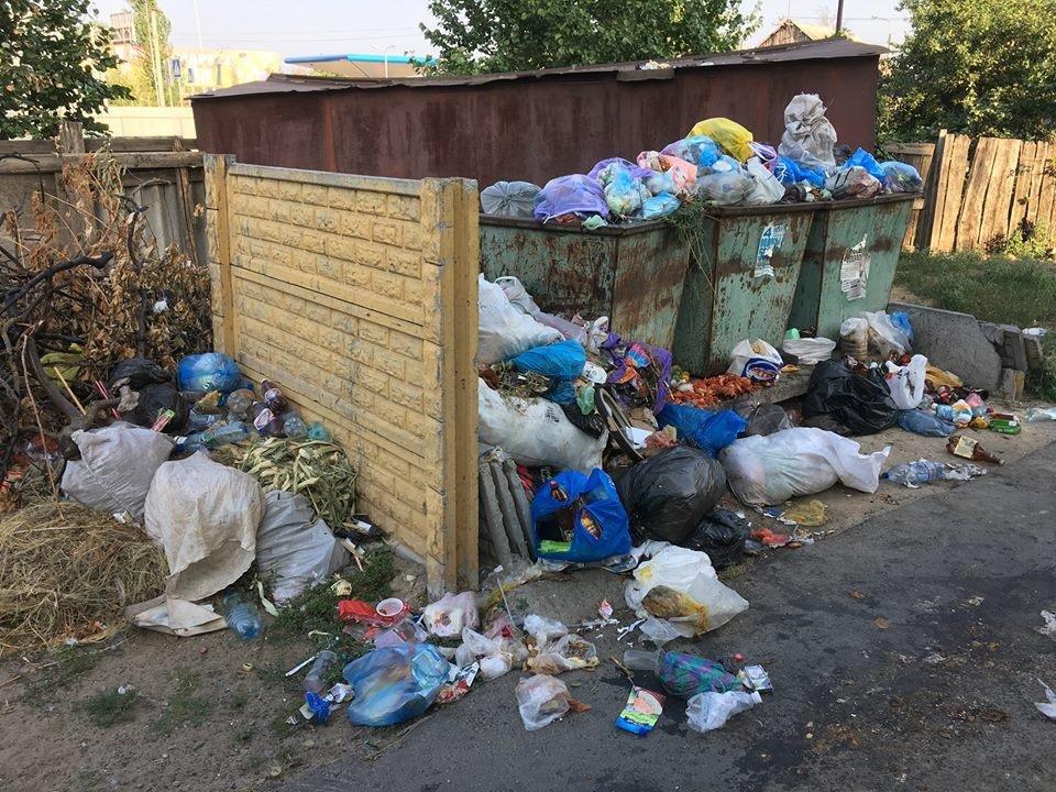 Райцентр Херсонщины утопает в мусоре. Власти уверяют, что проблему решают, фото-3