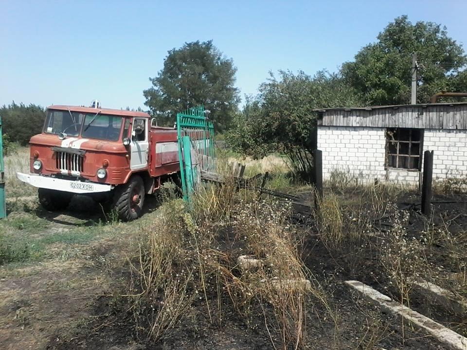 Ветер и замыкание проводов стали причиной лесного пожара на Херсонщине, фото-1