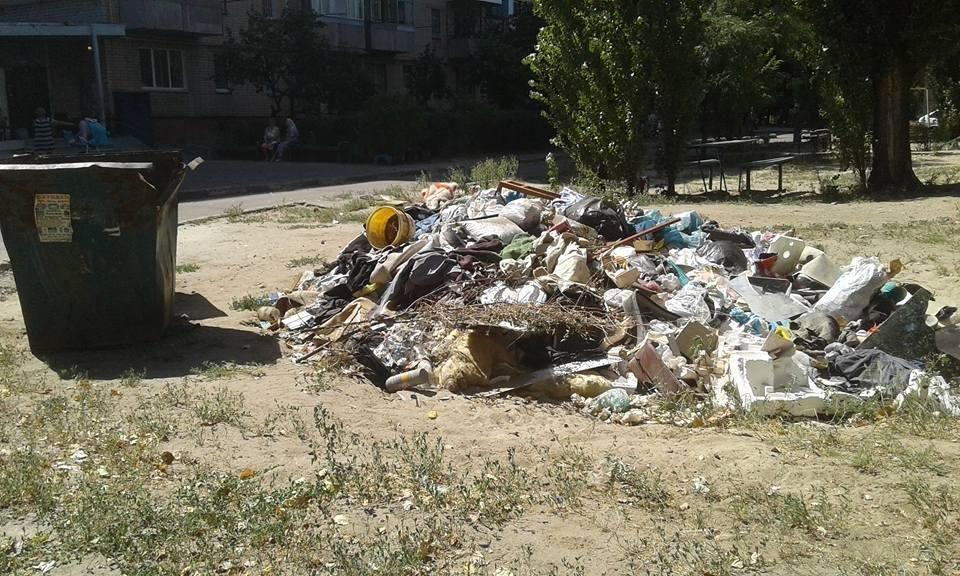 Херсон на грани мусорного коллапса?, фото-3