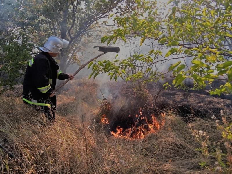 За добу на Херсонщині зафіксовано майже 50 пожеж, фото-1