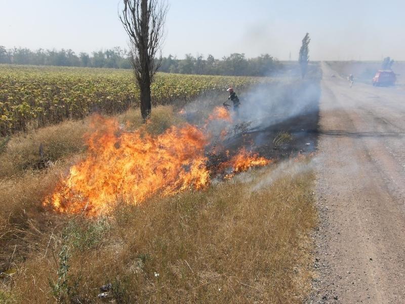 За добу на Херсонщині зафіксовано майже 50 пожеж, фото-3