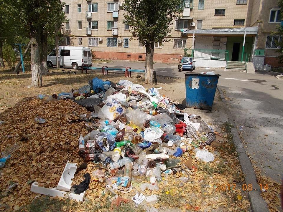 Херсонское предприятие оштрафовали за стихийные свалки, фото-2