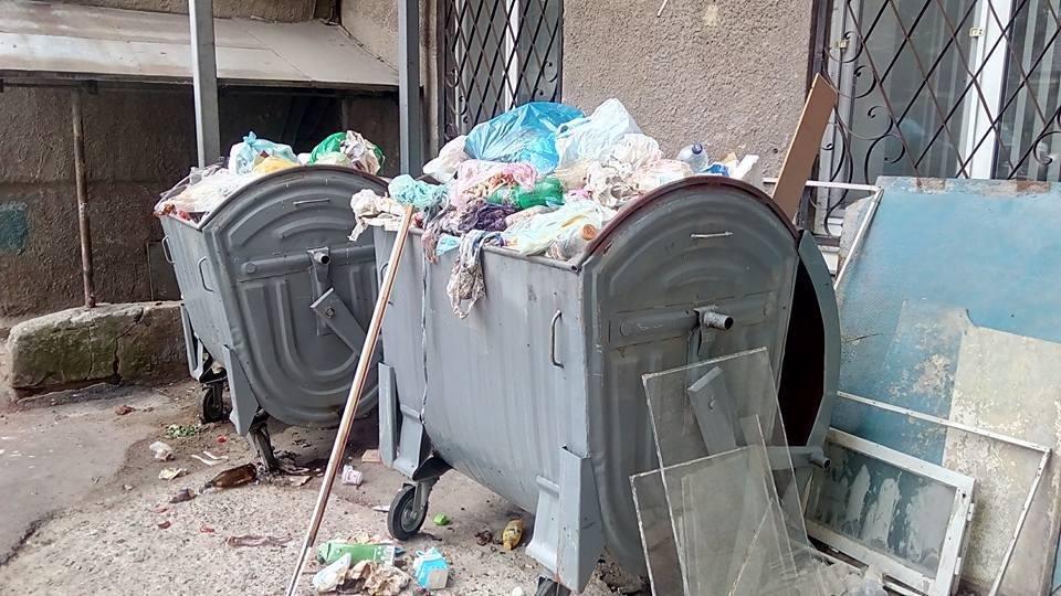 Прибирання сміття по-херсонськи, фото-1