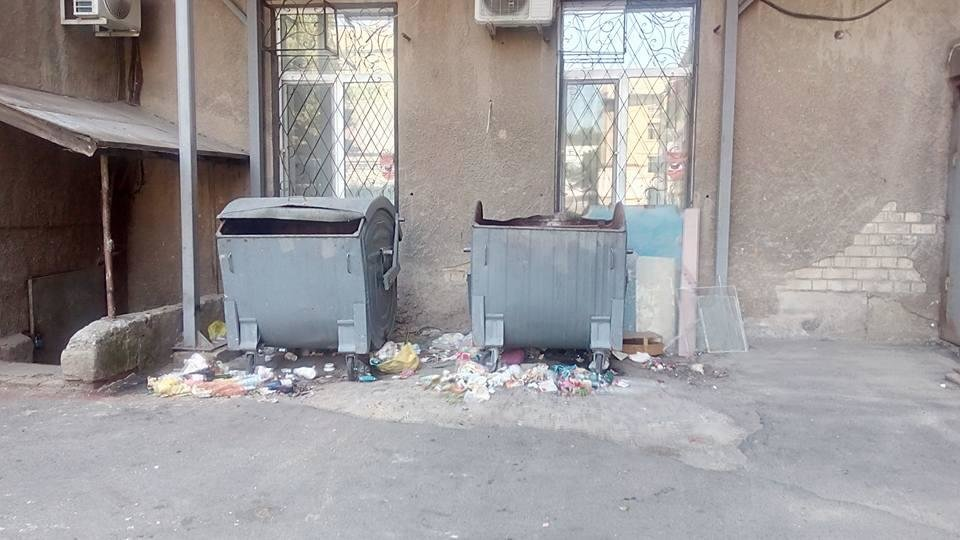 Прибирання сміття по-херсонськи, фото-2