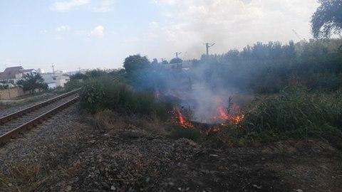 В Херсоне горит трава, фото-1