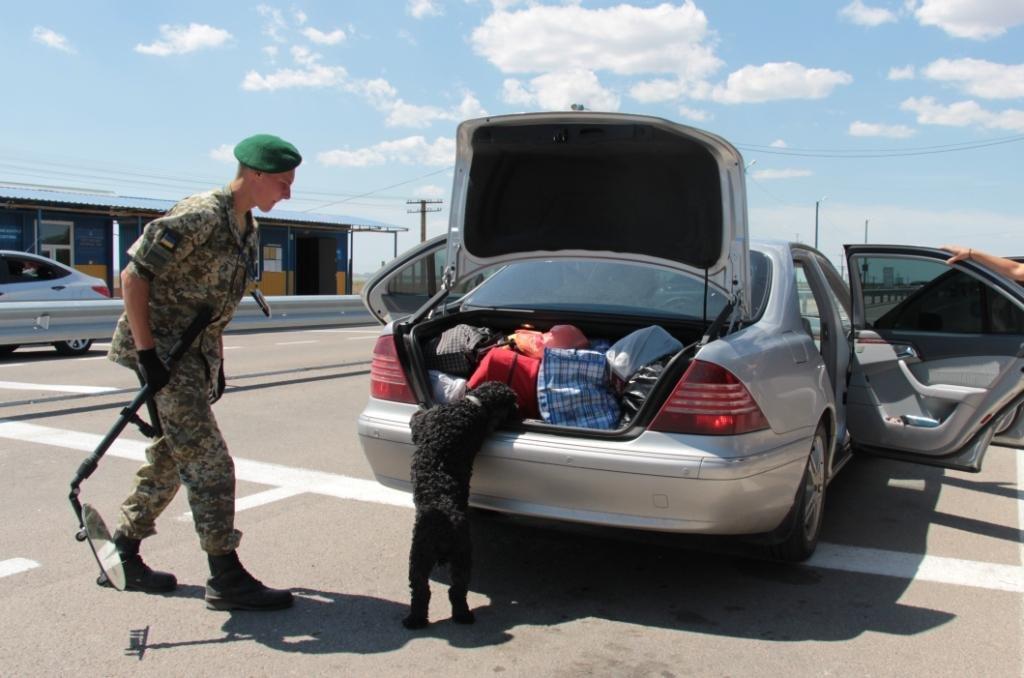 Службові собаки допомагають прикордонникам, фото-1