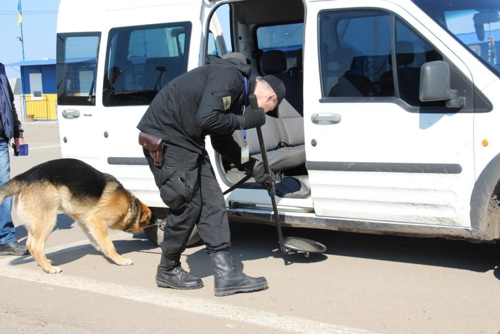 Службові собаки допомагають прикордонникам, фото-2