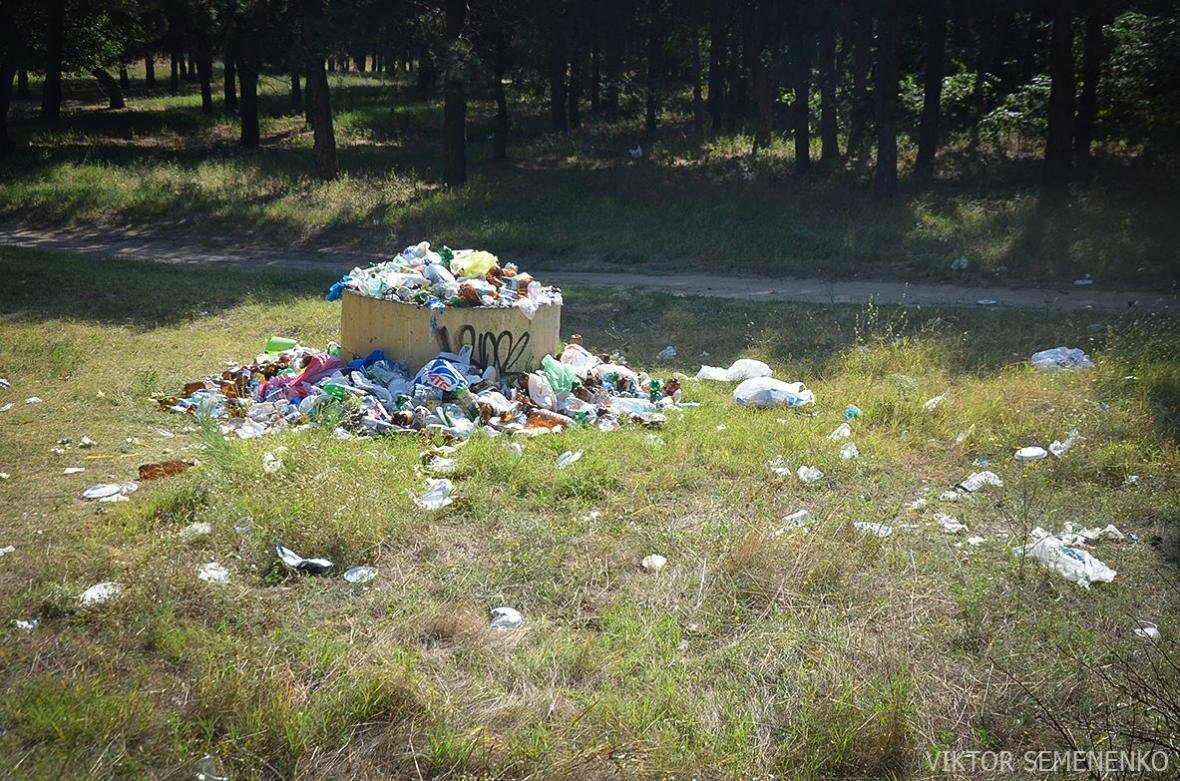 На Херсонщине, готовясь к празднику, забыли про вывоз мусора, фото-2