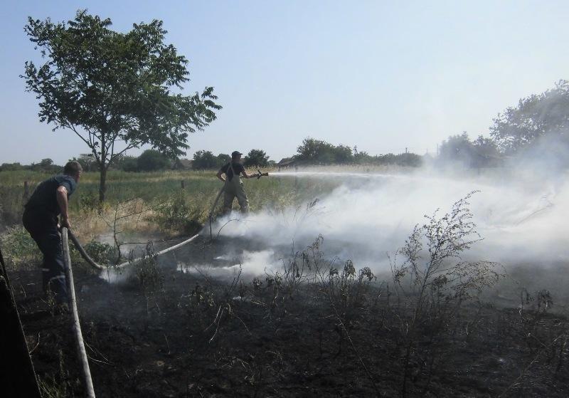 Протягом доби 12 разів горіла суха трава, фото-2