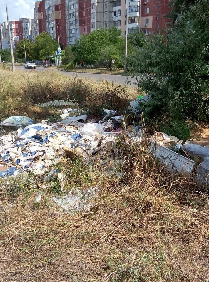 Херсонцы сносят мусор на пустырь (фото), фото-2