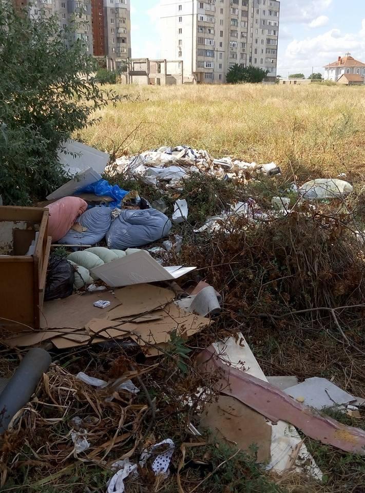 Херсонцы сносят мусор на пустырь (фото), фото-1