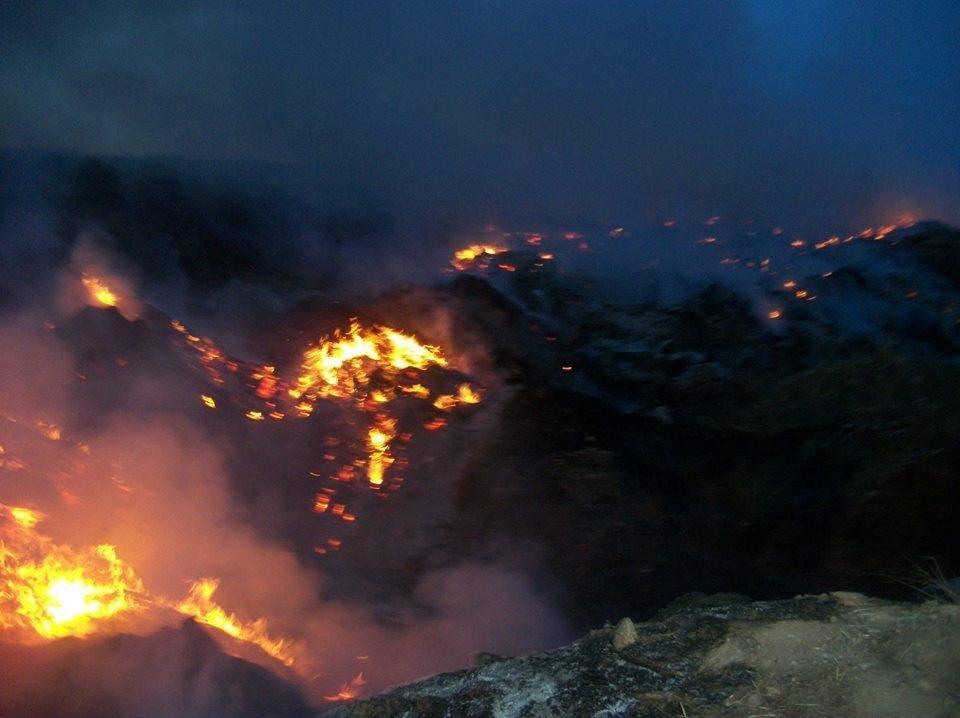 В Херсоне снова горела свалка, фото-2