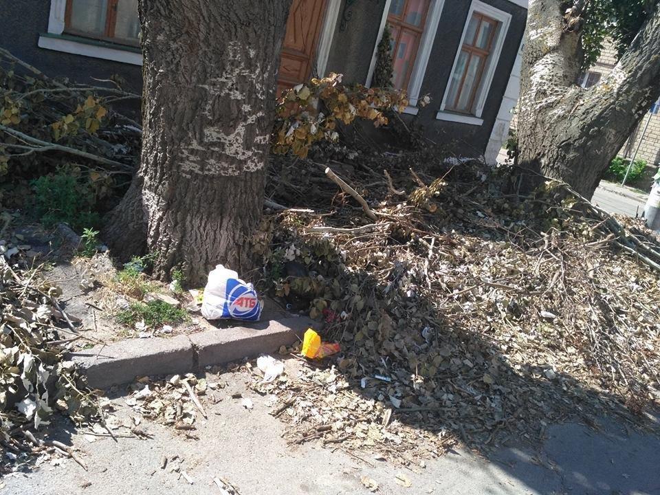 В Херсоне санитарная обрезка деревьев стала причиной стихийной свалки, фото-1