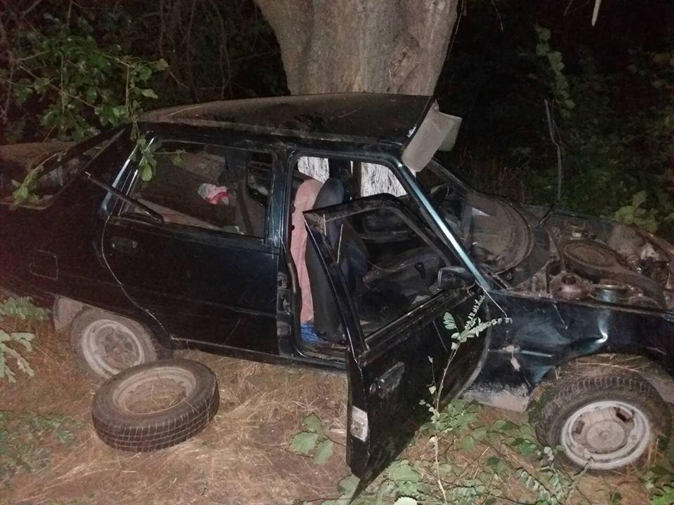 ДТП в Олешківському районі: одна людина загинула та три травмовані, фото-1