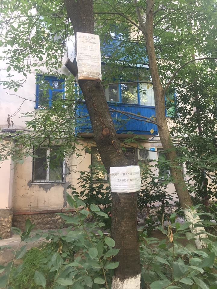 Херсонский депутат раскритиковала креатив одного из дворов, фото-4