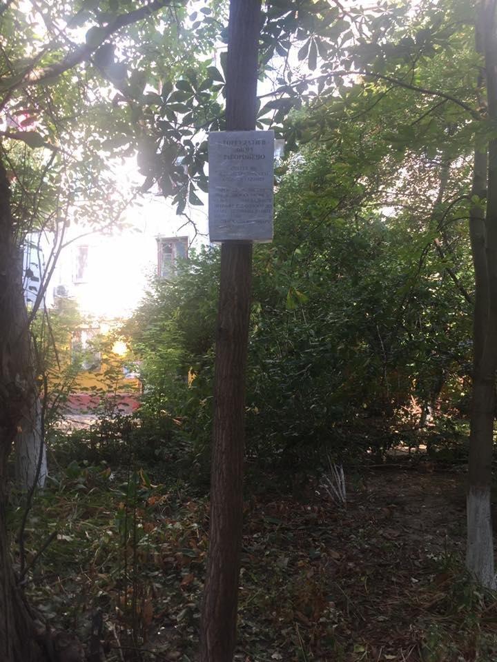Херсонский депутат раскритиковала креатив одного из дворов, фото-2