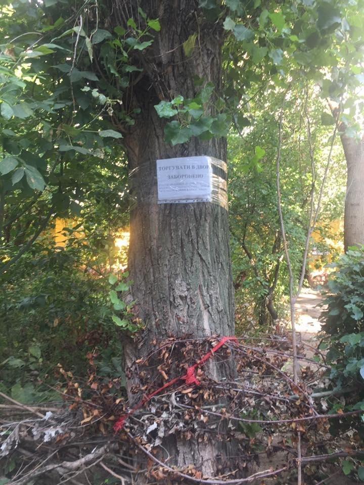 Херсонский депутат раскритиковала креатив одного из дворов, фото-3