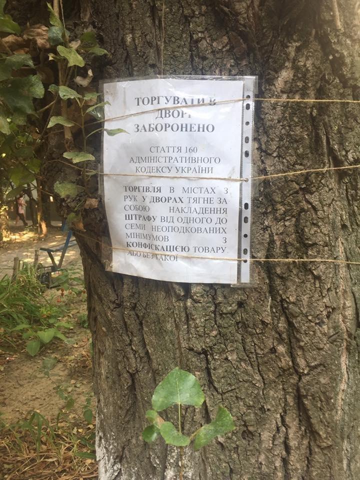 Херсонский депутат раскритиковала креатив одного из дворов, фото-1