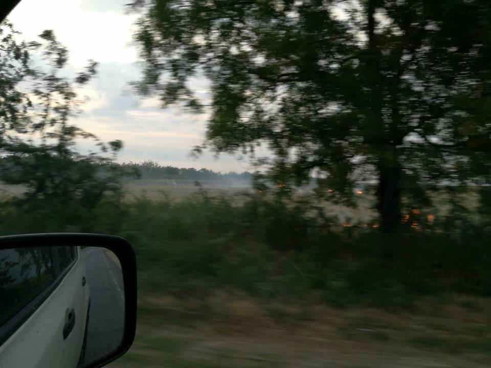 На Херсонщине снова горят поля, фото-3