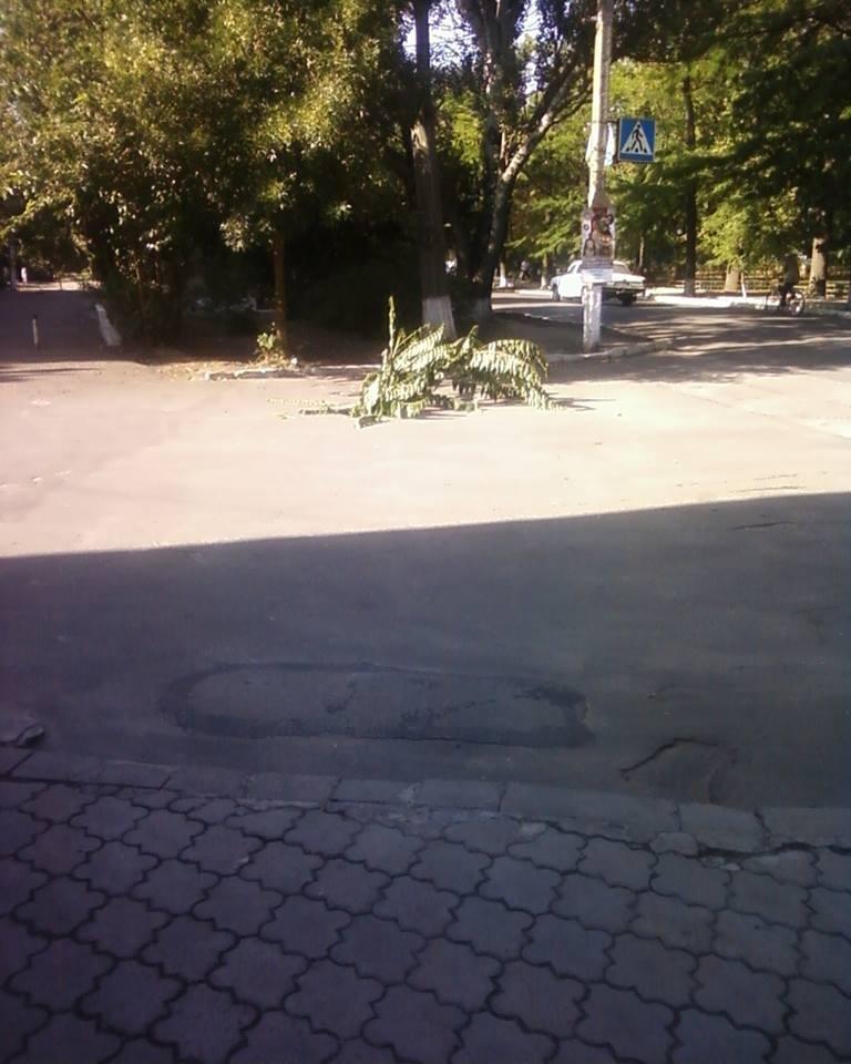 На Херсонщине снова воруют крышки люков (фото), фото-1